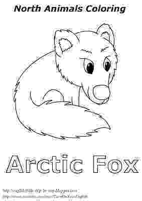 arctic animals coloring pages for preschoolers free printable arctic animals coloring pages coloring home for animals preschoolers arctic pages coloring