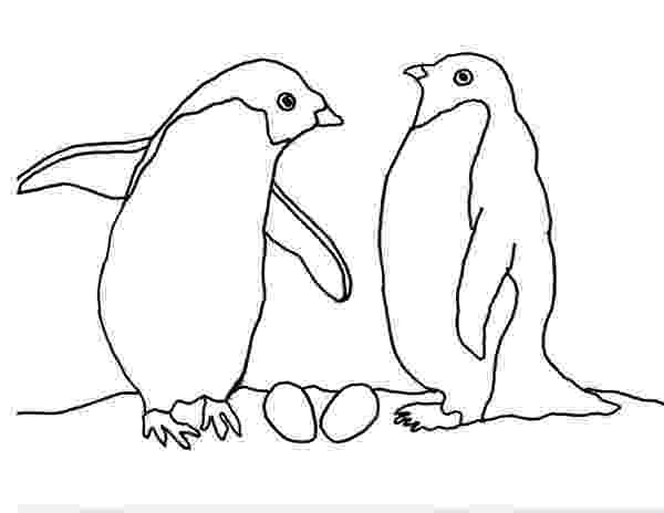 arctic animals coloring pages for preschoolers lars the little polar bear sitting on an igloo coloring preschoolers pages coloring arctic animals for