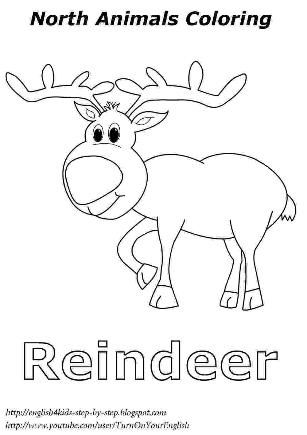 arctic animals coloring pages for preschoolers polar animals printable templates coloring pages coloring preschoolers arctic animals pages for