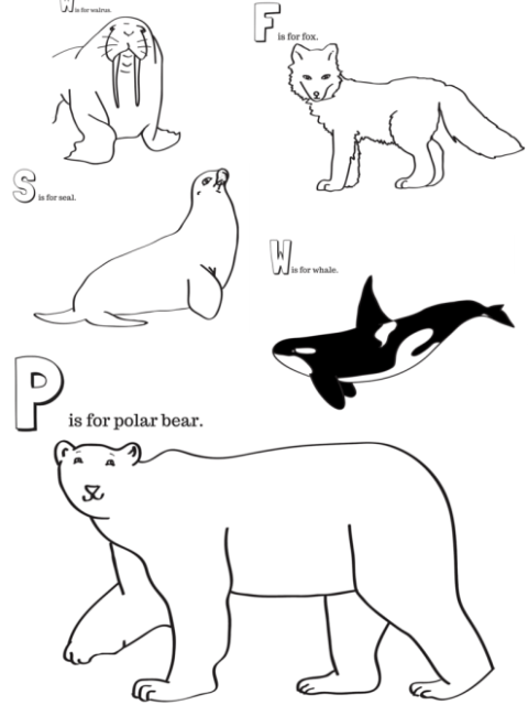 arctic animals coloring pages for preschoolers sid the science kid coloring pages arctic animals preschoolers coloring arctic animals pages for