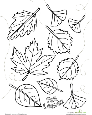 autumn leaves coloring pages autumn leaves coloring page free printable coloring pages coloring leaves autumn pages