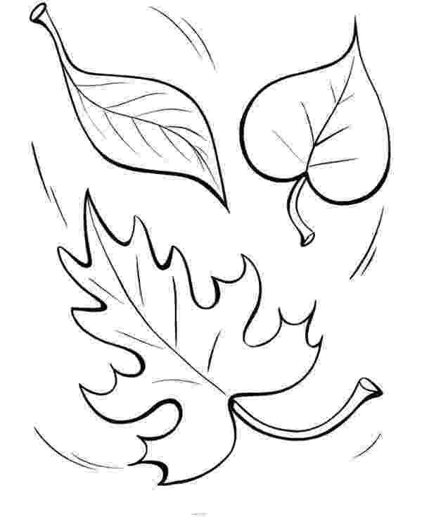 autumn leaves coloring pages fall leaves coloring pages getcoloringpagescom coloring leaves pages autumn