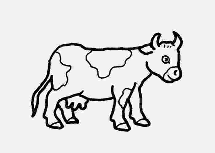 baby cow coloring pages baby cow coloring page free coloring pages and coloring coloring cow baby pages