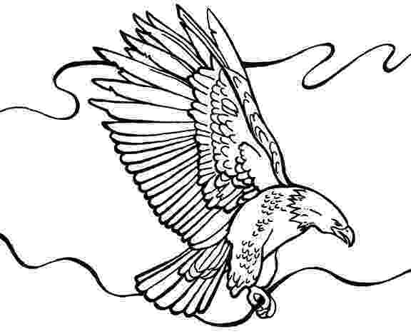 bald eagle pictures to color bald eagle coloring page free printable coloring pages eagle color to bald pictures