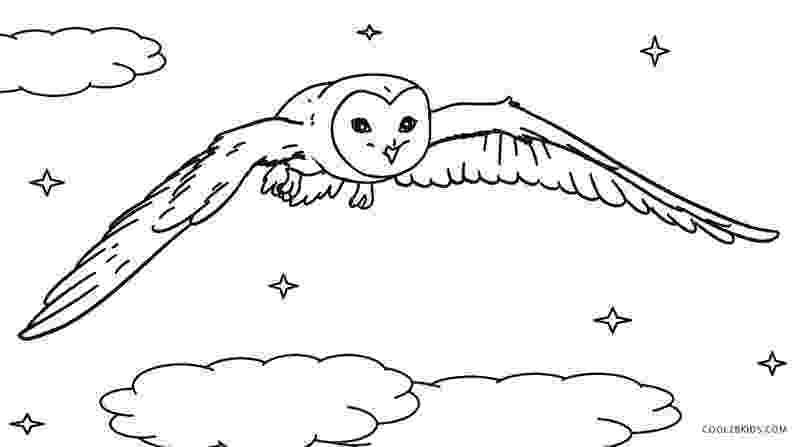barn owl coloring pages printable barn owl coloring page free printable coloring pages owl printable coloring barn pages