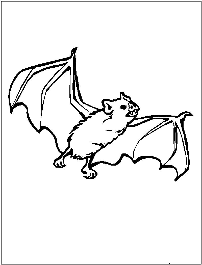 bat color page bat coloring pages for kids printable coloring pages bat color page
