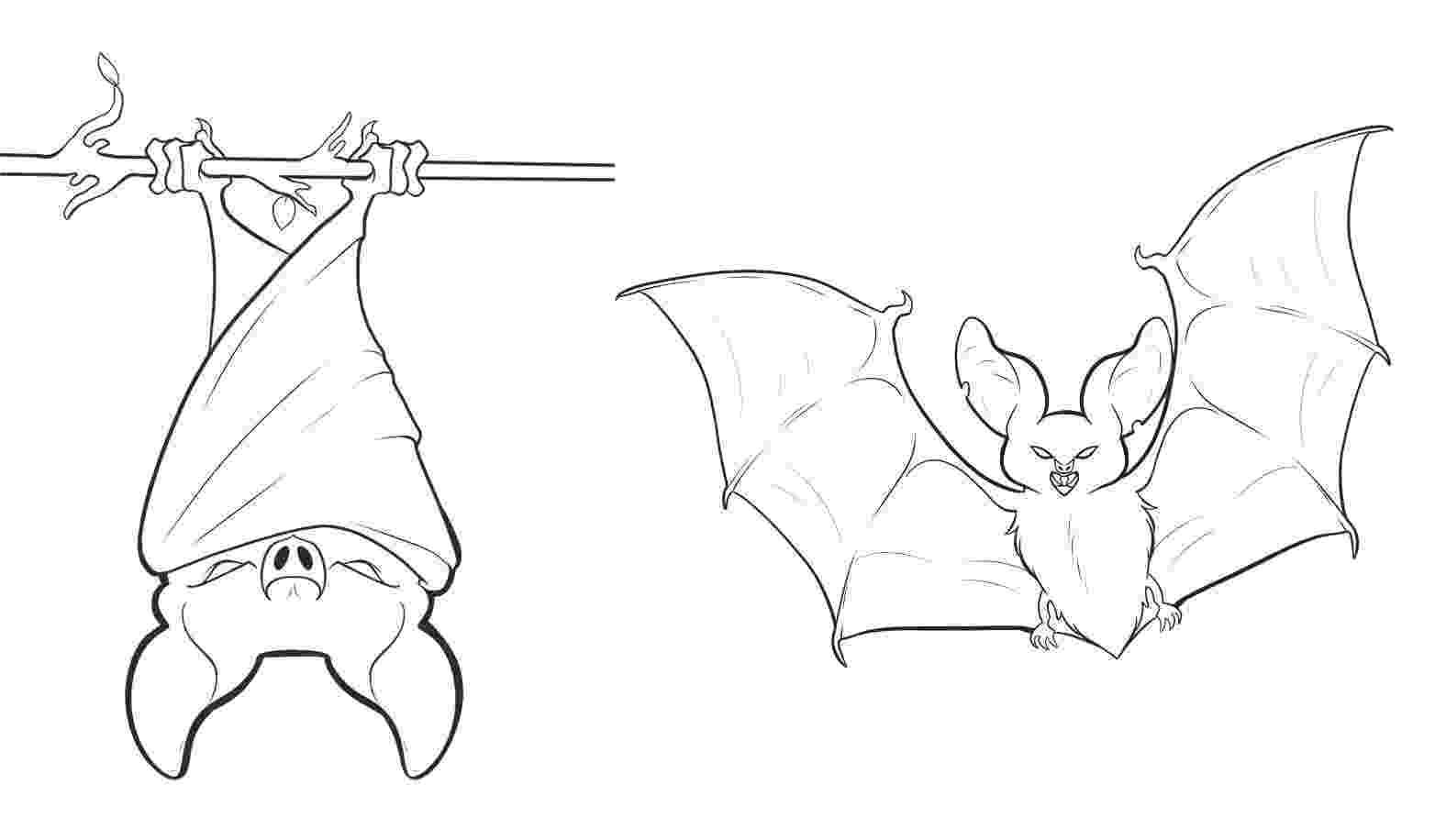 bats coloring pages free printable bat coloring pages for kids bats pages coloring