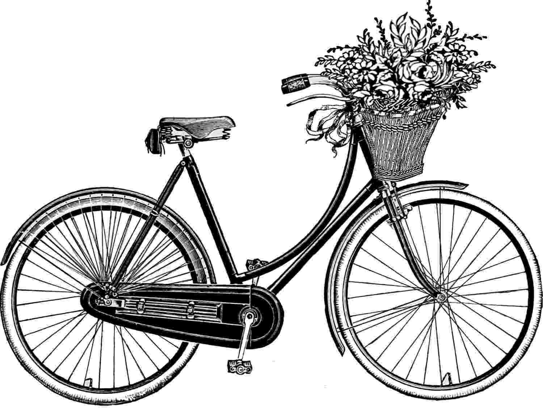 bicycle sketch drawing bicycle clipart best bicycle sketch