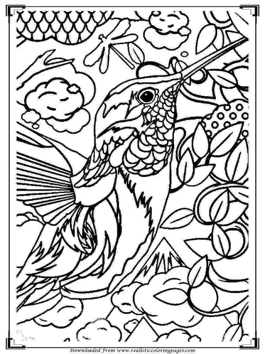 bird coloring images mother baby bird coloring page pitara kids network coloring bird images