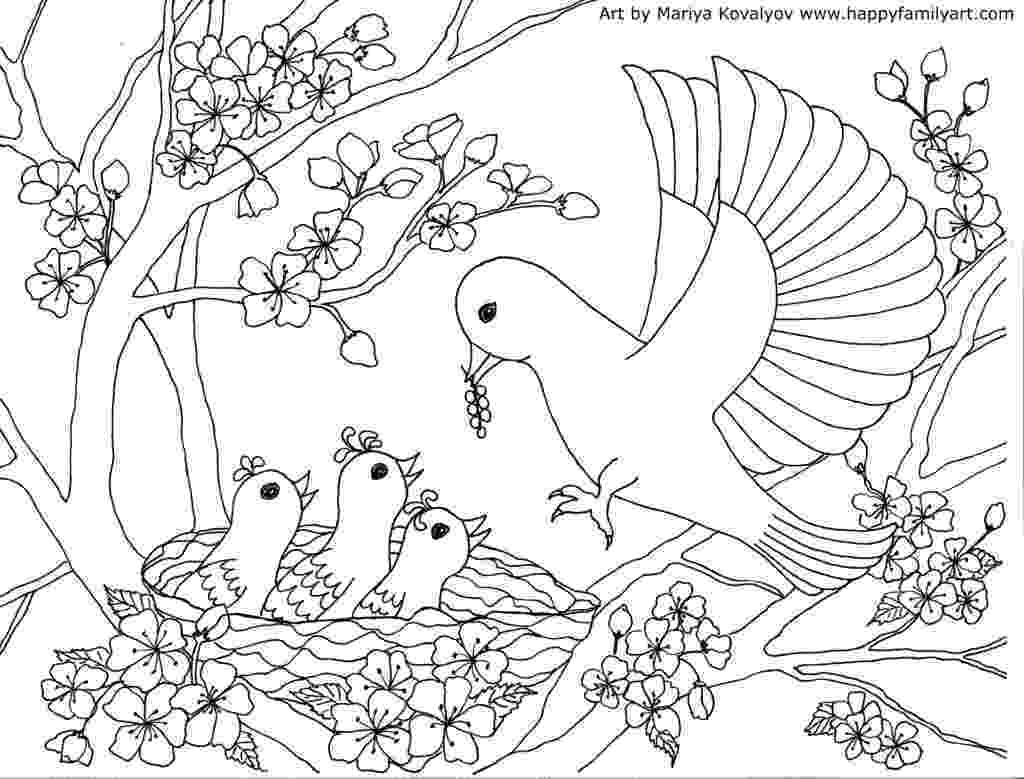 bird coloring pages free printable advanced bird coloring pages for adults free bird coloring pages free