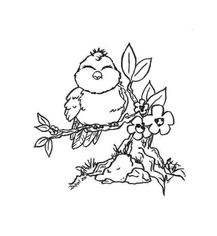 bird coloring pages to print cute bird flowers branch adult coloring pages print bird coloring to pages