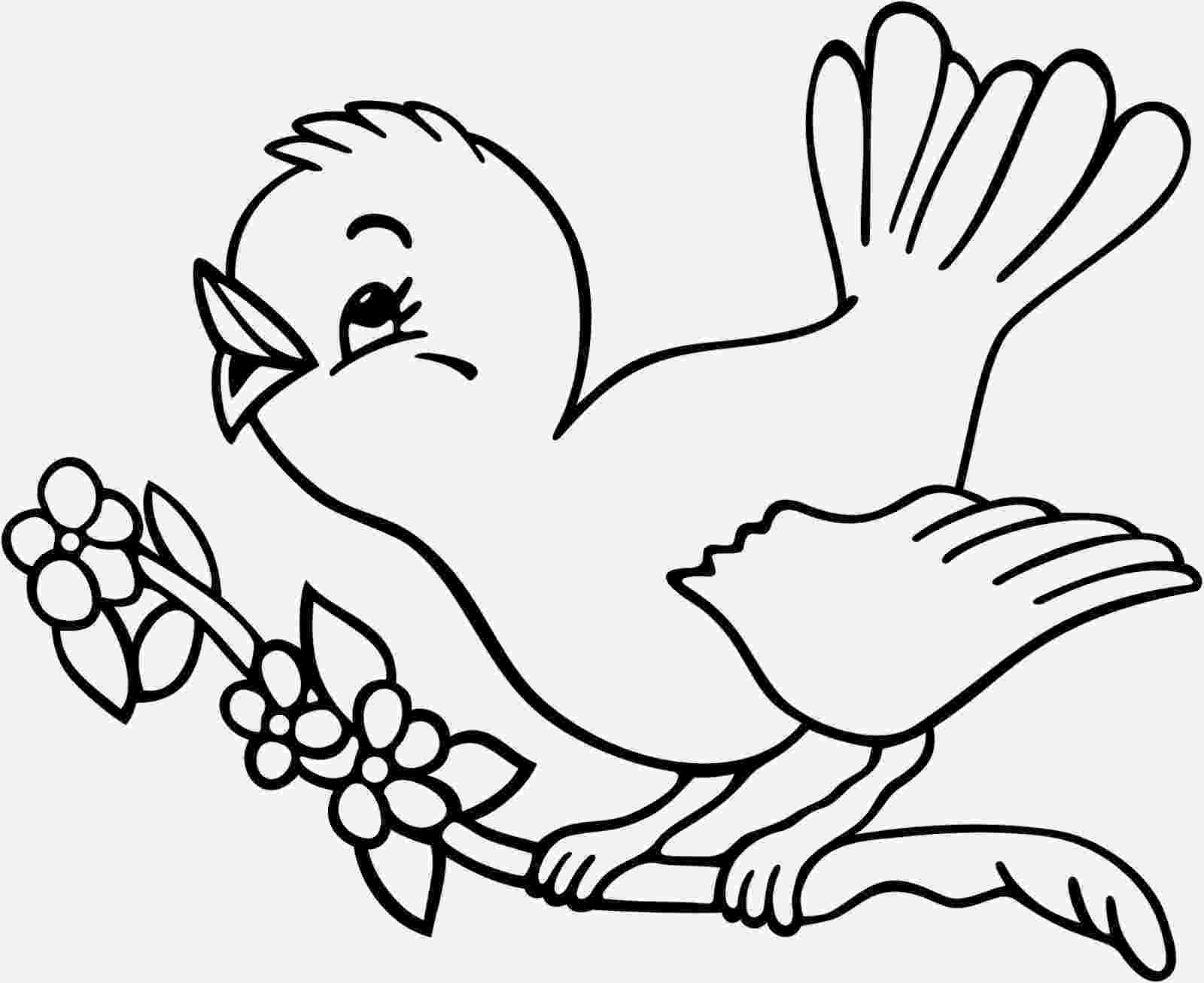 birds to color birds coloring pages getcoloringpagescom birds color to