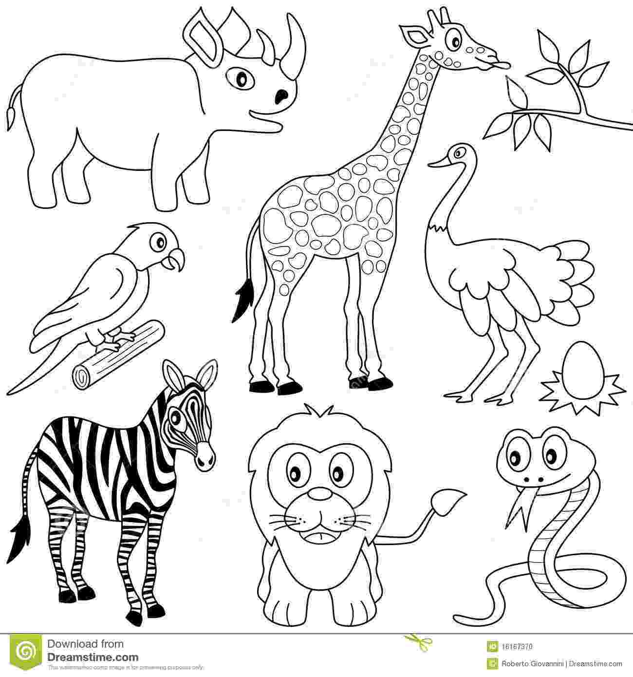 black and white animal pictures to color coloring african animals 1 stock vector illustration color and pictures to black animal white