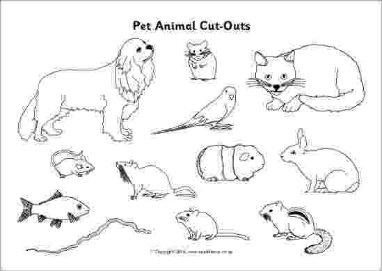 black and white animal pictures to color pet animal cut outs black and white sb10306 to white pictures and animal color black