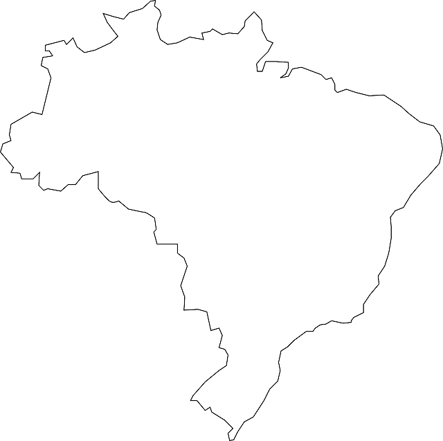 blank brazil flag french flag france flag history facts image blank brazil flag