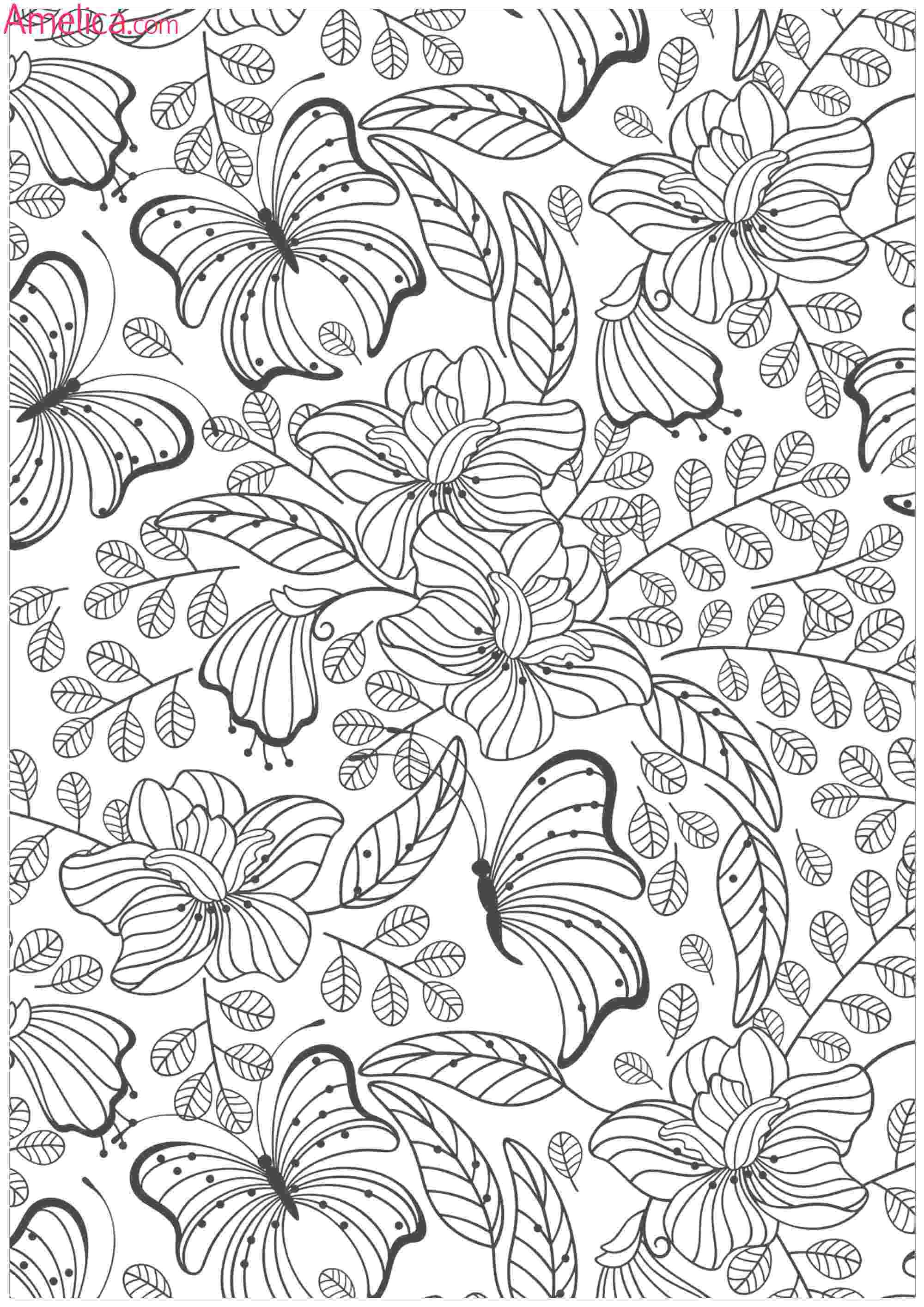 botany coloring book download botany coloring book download my jaksuka blog botany download book coloring