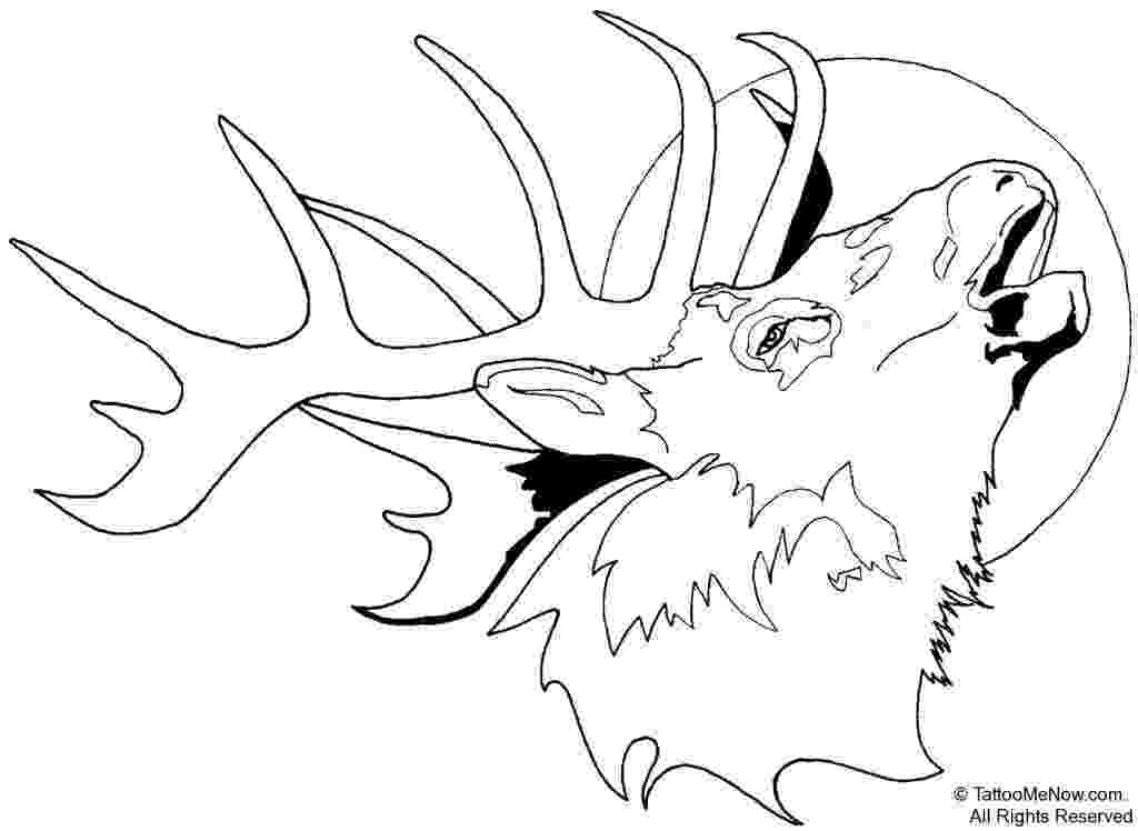 buck coloring pages buck and doe coloring pages coloring home coloring buck pages
