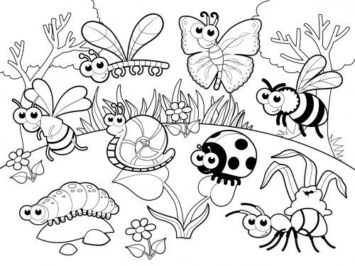 bugs colouring pages detailed coloring page bugs in our garden insect pages colouring bugs