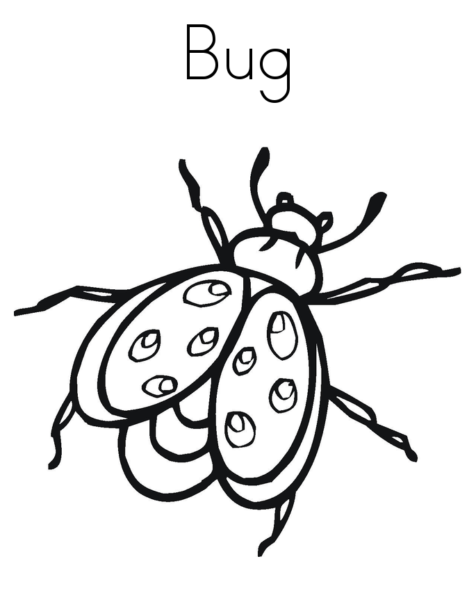 bugs colouring pages free printable bug coloring pages for kids colouring pages bugs