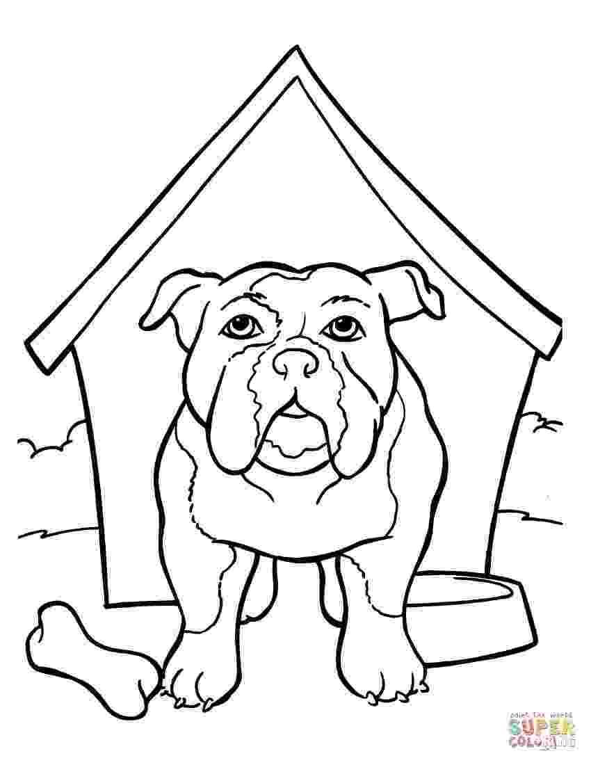 bulldogs coloring pages bulldog coloring page free printable coloring pages pages bulldogs coloring