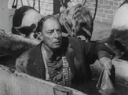 buster moon buster keaton enters the twilight zone moon in gemini buster moon 1 1