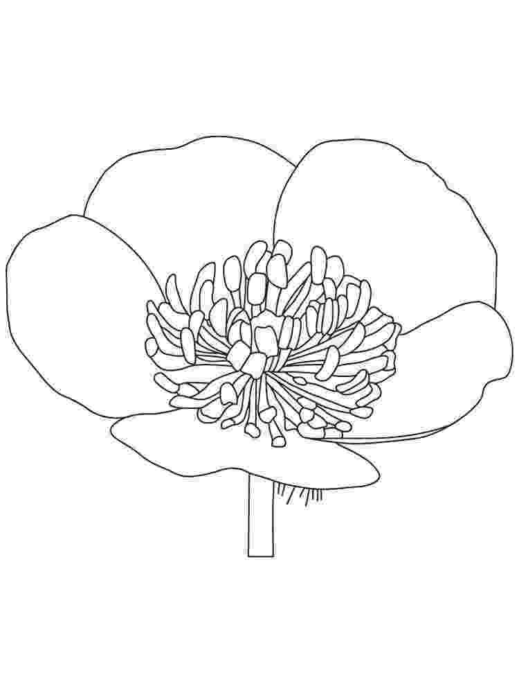 buttercup coloring pages powerpuff girls buttercup laughing coloring page h m coloring pages buttercup