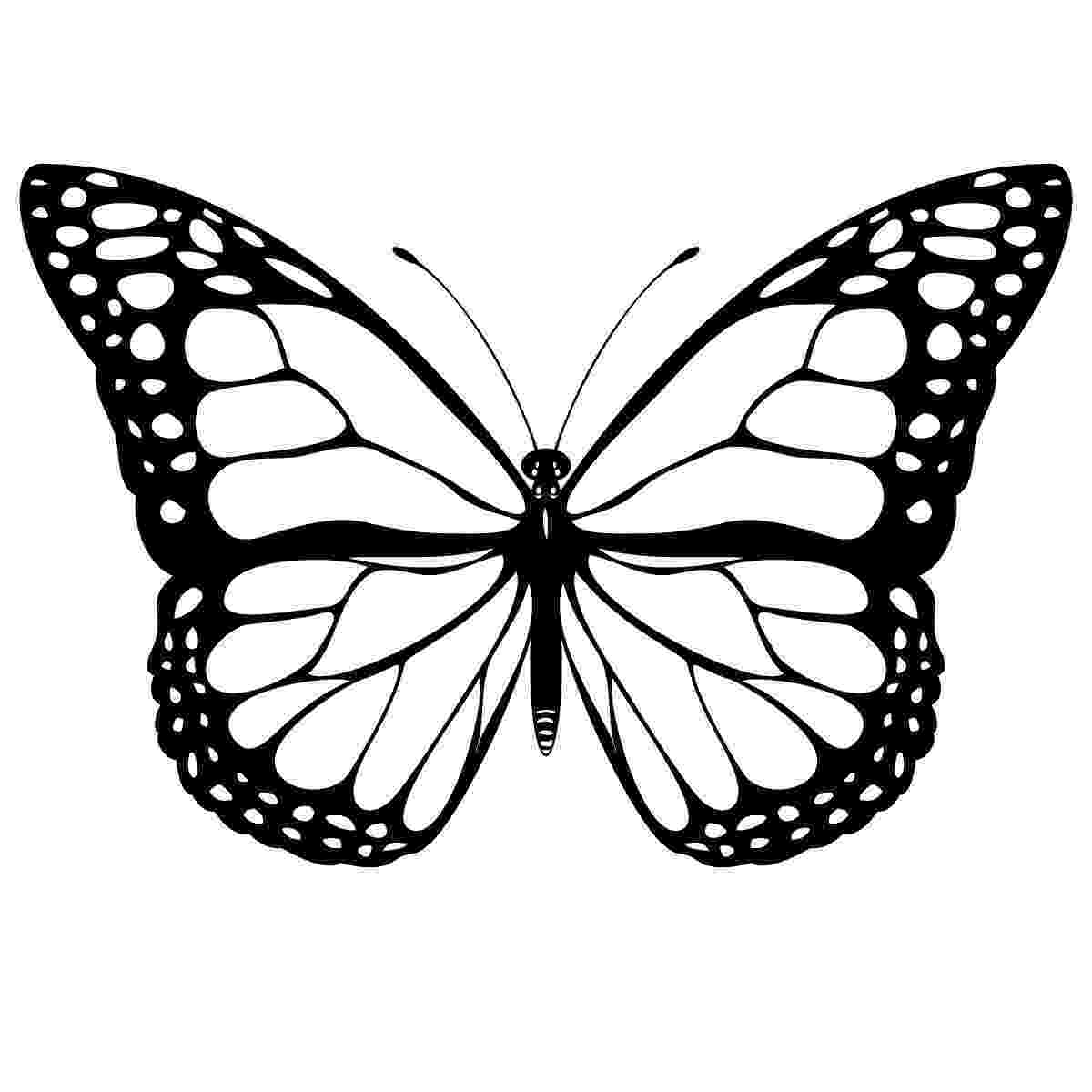 butterflies to color free free printable butterfly coloring pages for kids color to free butterflies