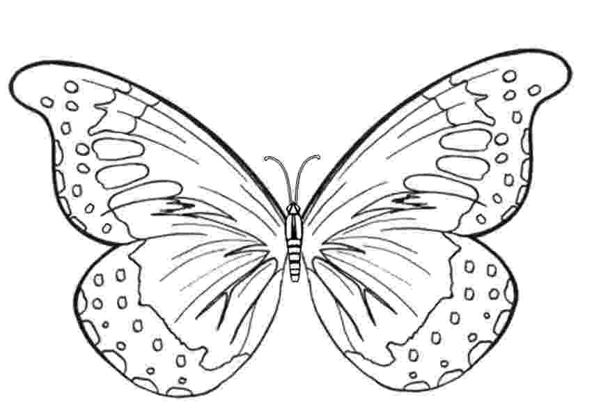 butterfly pictures to color and print butterfly coloring pages team colors color print pictures butterfly and to