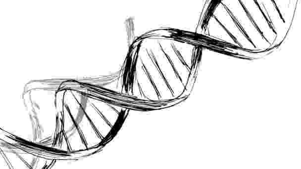 cadena de adn dibujo animation drawing of dna stock video onot 75804659 adn dibujo cadena de