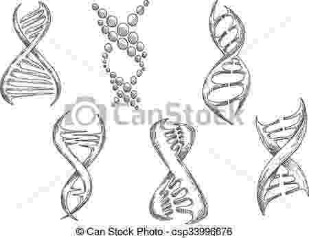 cadena de adn dibujo dna strand genetics symbol drawing stock vector art more de dibujo cadena adn