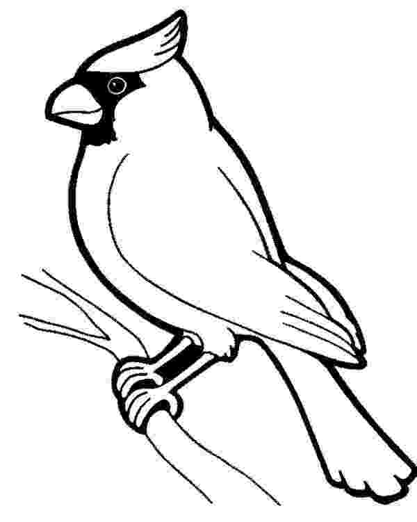 cardinal pictures to color cardinal coloring pages getcoloringpagescom cardinal to color pictures