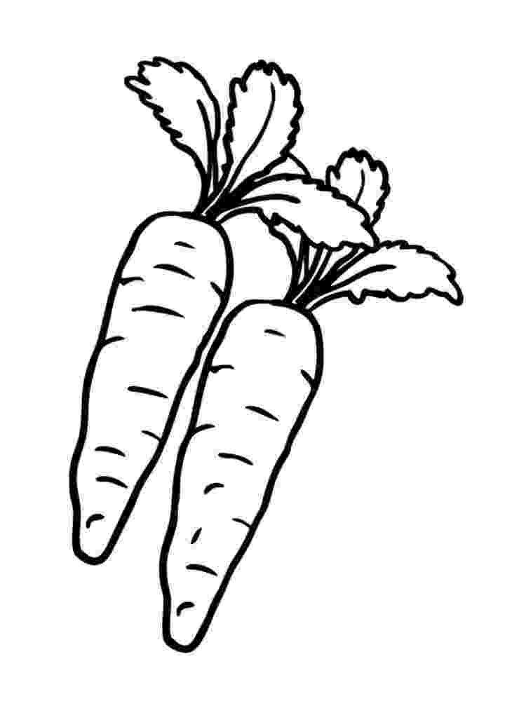 carrot coloring picture carrots drawing at getdrawings free download coloring picture carrot