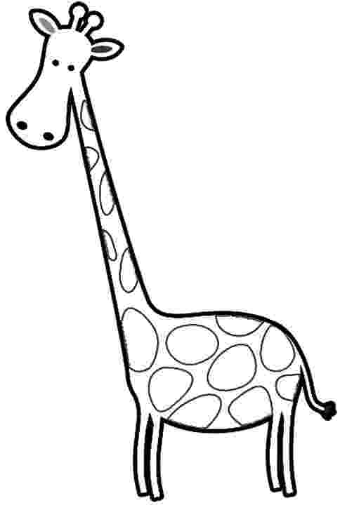cartoon giraffe 237 best baby giraffes images on pinterest cartoon giraffe