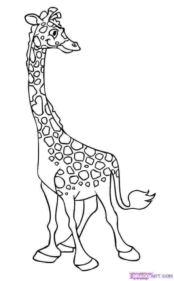 cartoon giraffe cartoon drawing of giraffe at getdrawingscom free for giraffe cartoon