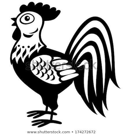 cartoon rooster handsome rooster black contour on white stock vector cartoon rooster
