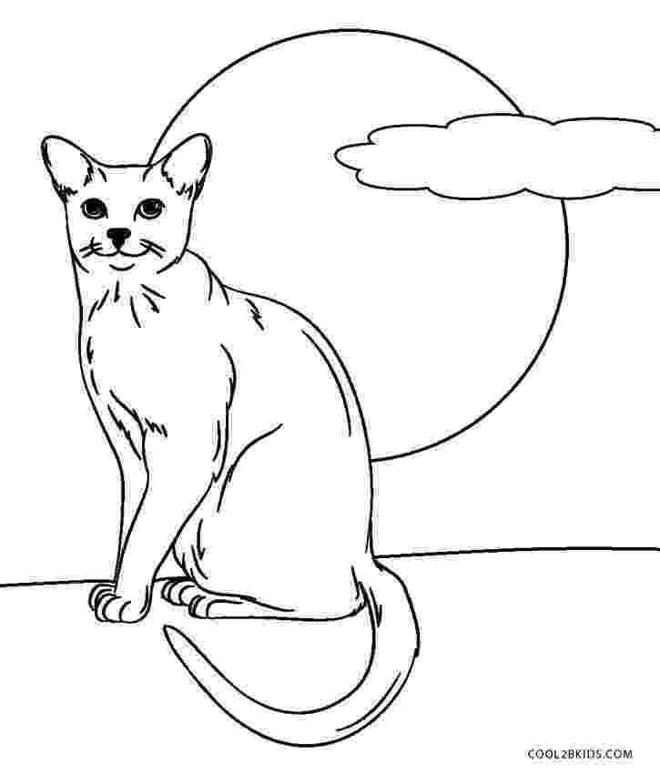 cat color pages animals letmecolor pages color cat
