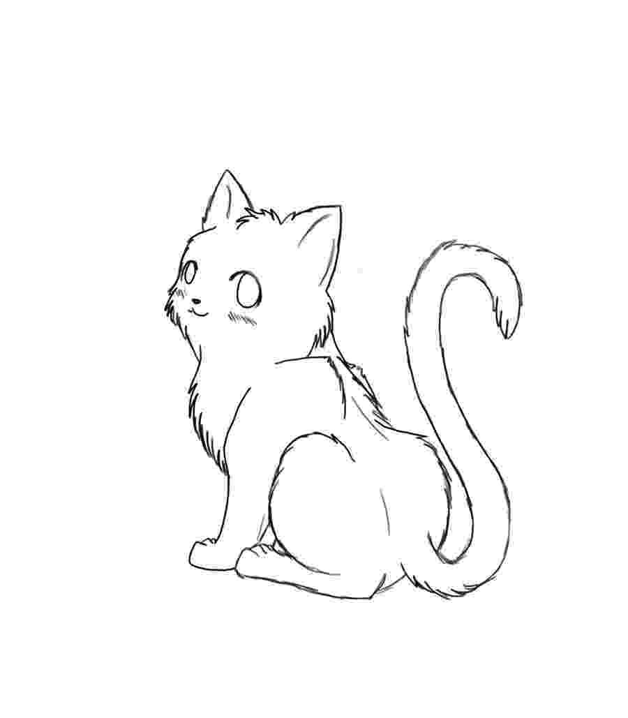 cat color pages cat coloring page getcoloringpagescom pages color cat
