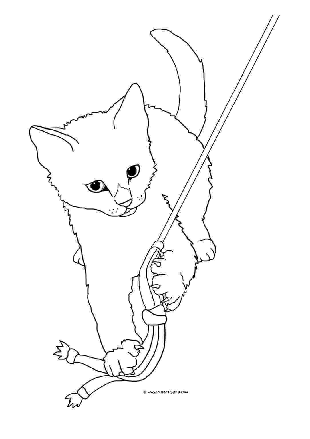 cat coloring pages cute kitten coloring pages getcoloringpagescom pages cat coloring