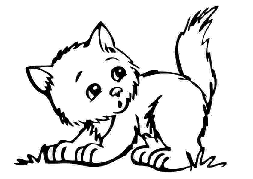 cat pictures for kids to color free printable cat coloring pages for kids cool2bkids kids cat color for to pictures
