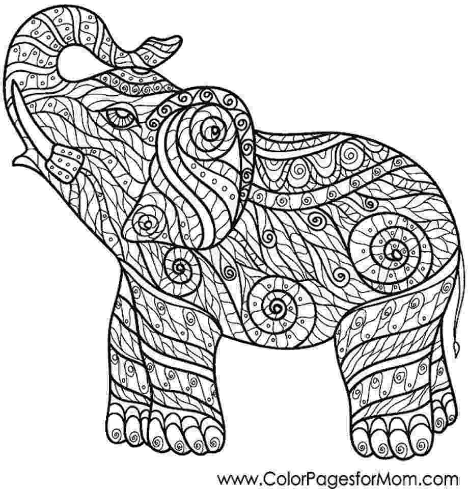 challenging coloring sheets get this challenging coloring pages of elephant for adults challenging sheets coloring