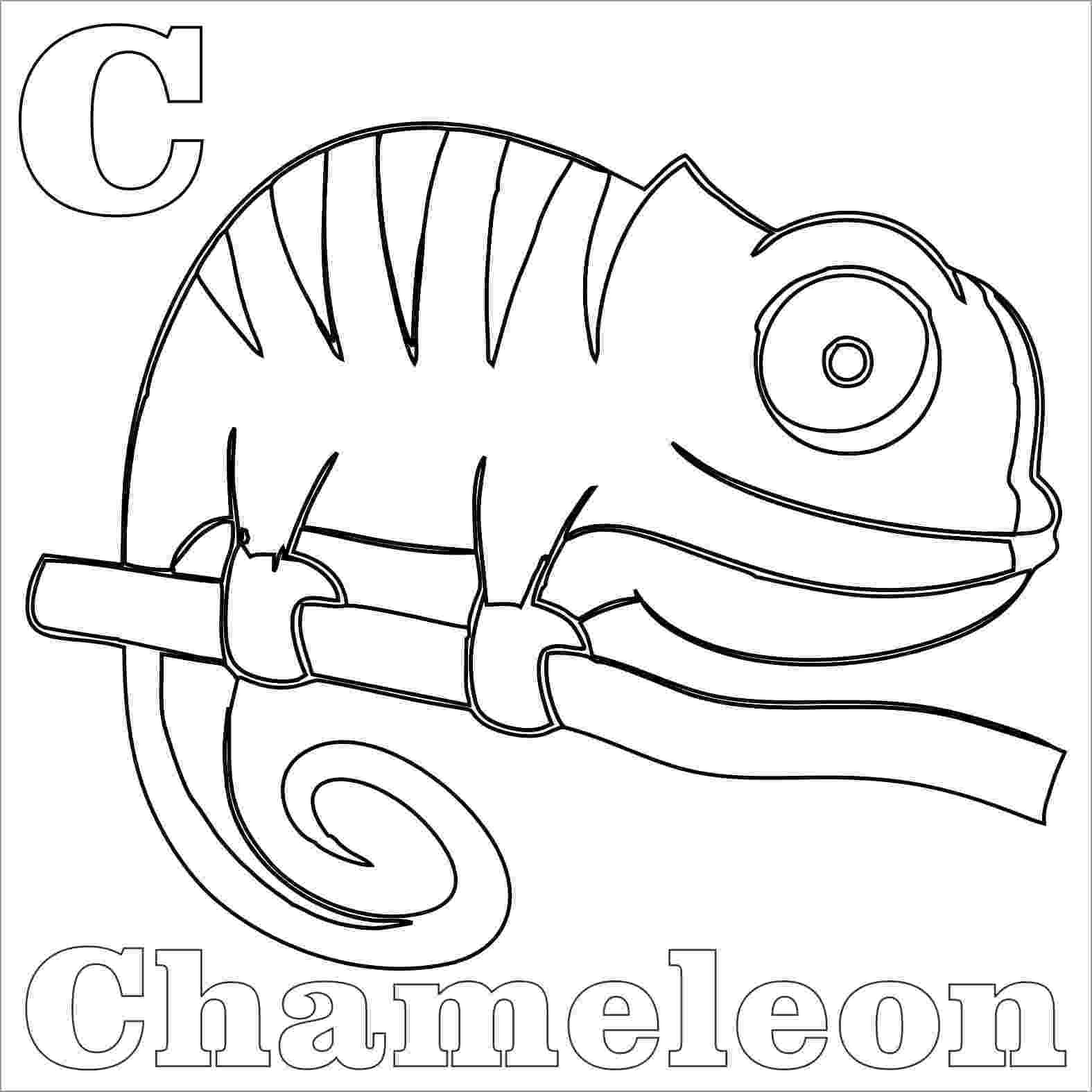 chameleon coloring pages chameleon coloring pages coloring chameleon pages