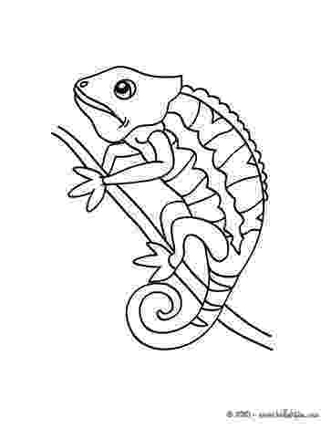 chameleon coloring pages chameleon coloring pages to download and print for free chameleon pages coloring