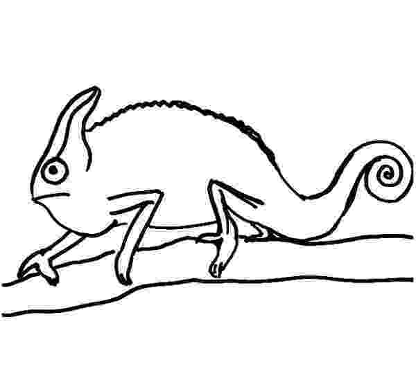 chameleon coloring pages chameleon coloring pages to download and print for free pages chameleon coloring