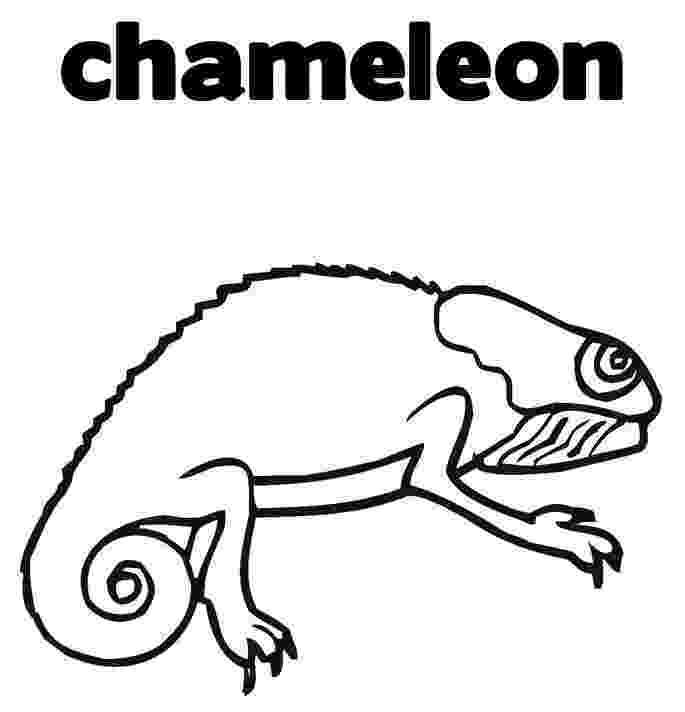 chameleon coloring pages chameleon coloring pages to printable coloring chameleon pages 1 1