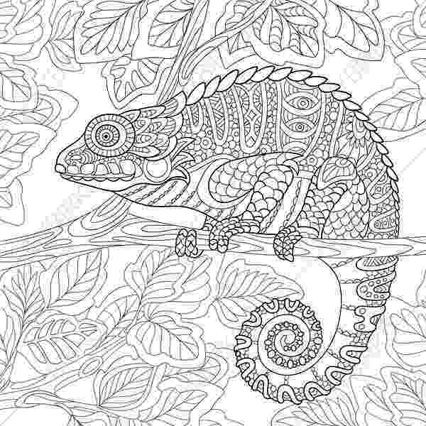 chameleon coloring pages chameleon lizard 2 coloring pages animal coloring book coloring chameleon pages