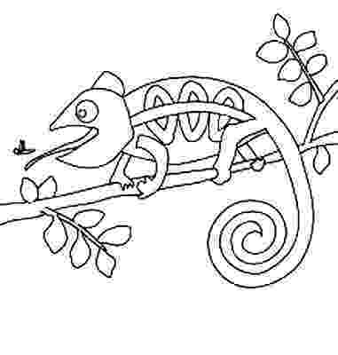 chameleon coloring pages mixed up chameleon coloring page coloring home chameleon pages coloring