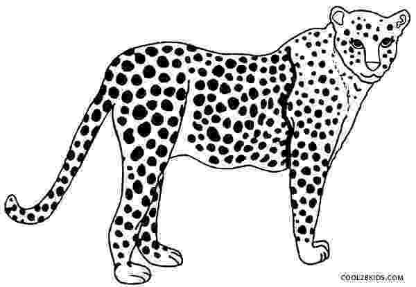 cheetah coloring page cheetah coloring page getcoloringpagescom coloring page cheetah