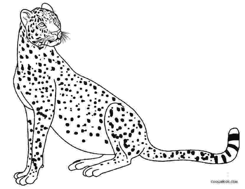 cheetah coloring page cheetah coloring pages 360coloringpages cheetah page coloring