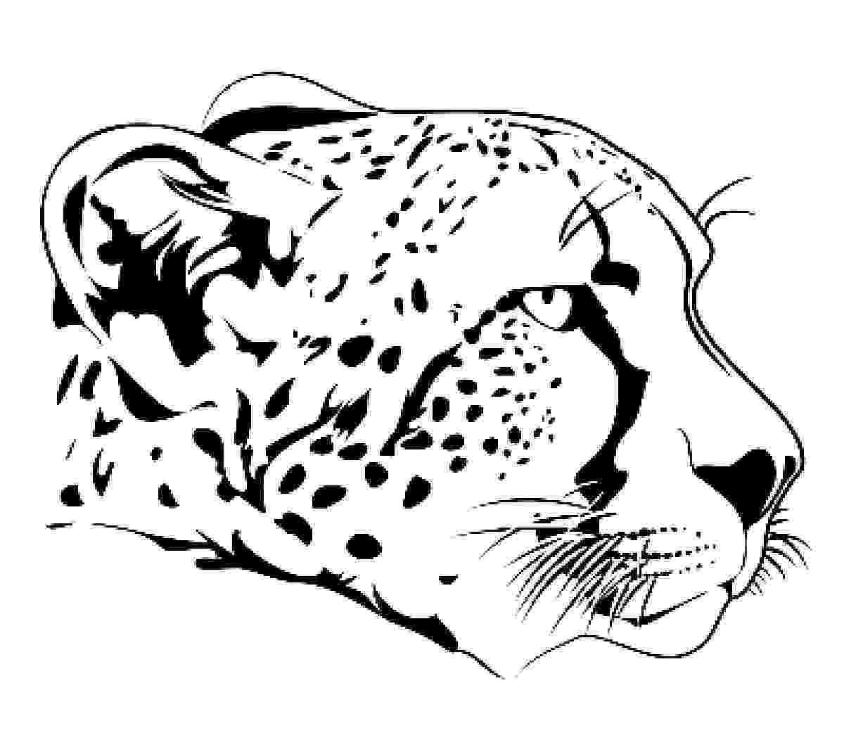 cheetah coloring page cheetah coloring pages 360coloringpages page cheetah coloring 1 1