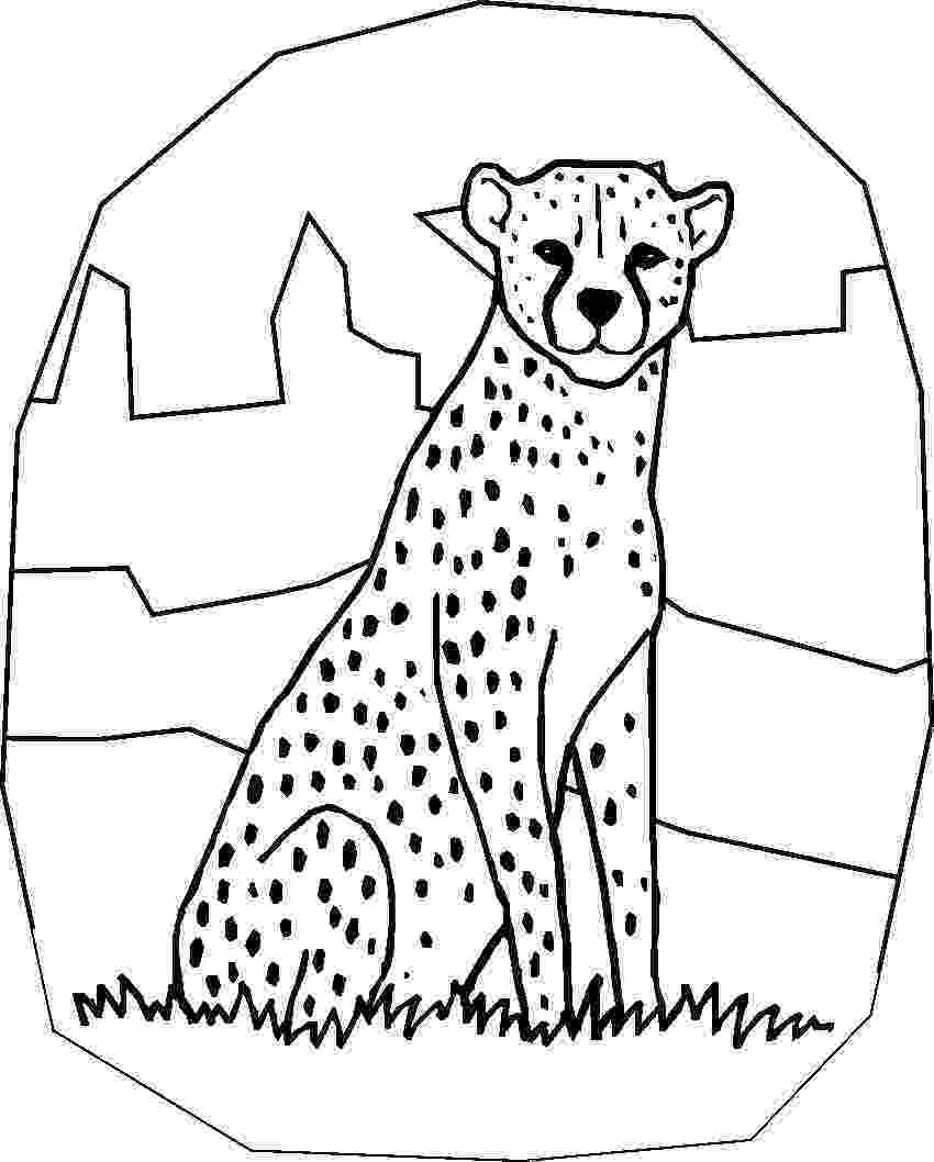 cheetah coloring page cheetah coloring pages to download and print for free page cheetah coloring
